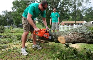 Best Chainsaws Under 400